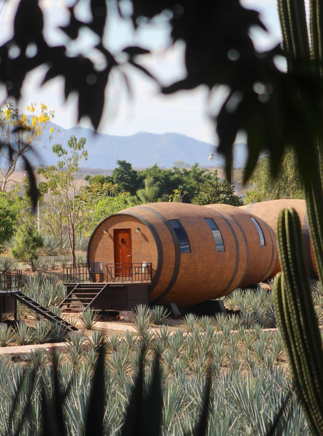 Sleeping In A Tequila Barrel Hotel Town Mexico Review