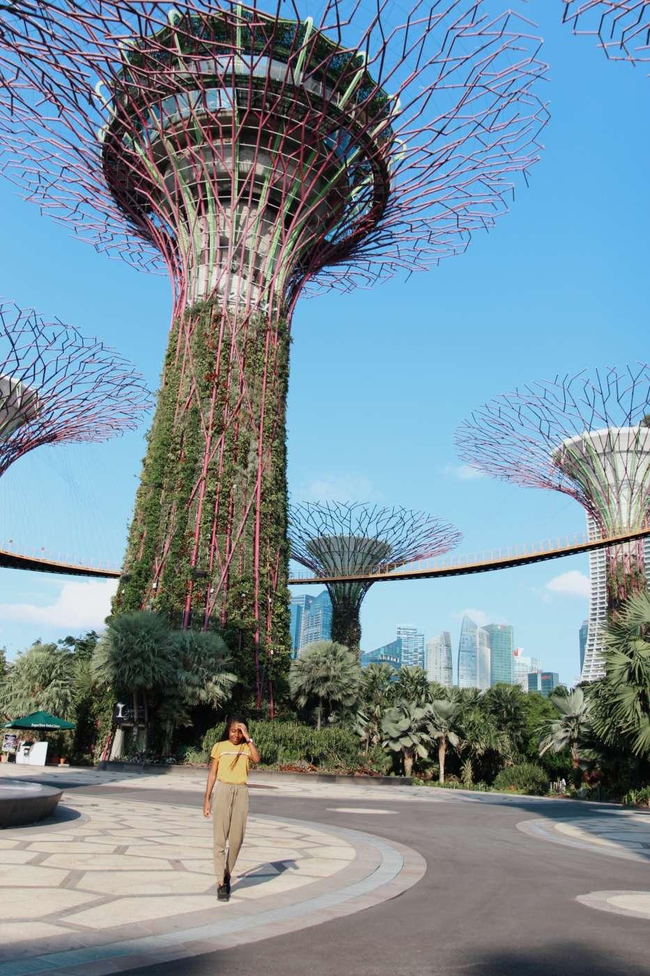 jamaicans-in-singapore